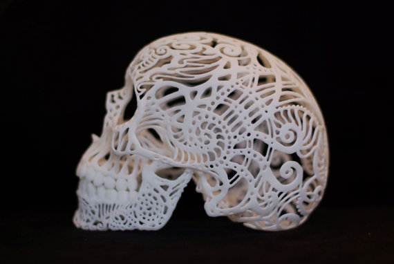 Skull Sculpture Crania Anatomica Filigre (medium)