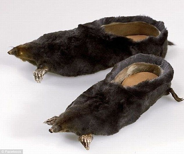 "Who would look at a pair of moles and think ""I know, SLIPPERS!"""